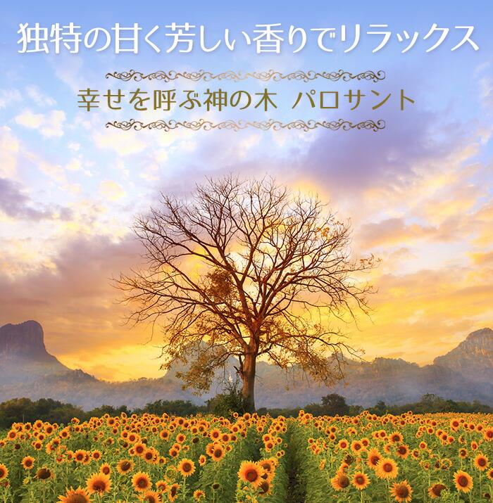 幸せを呼ぶ木「パロサント(PALOSANTO)」