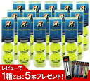 BRIDGESTONE (Bridgestone) TOUR PRO ( tsuapuro ) 1 carton (15 cans / 60 balls) tennis ball ku fs3gm