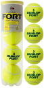 DUNLOP (Dunlop) tennis ball fs3gm