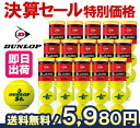 One (15 cans /60 ball) DUNLOP( Dunlop )St.JAMES( cent James) tennis ball ku