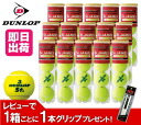 Tennis ball DUNLOP (Dunlop)St.JAMES(confraternity) 1 box ( 15 cans / 60 balls) ku