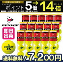 One (15 cans /60 ball) DUNLOP( Dunlop )St.JAMES( cent James) tennis ball fs3gm