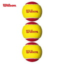 Wilson(윌슨) 테니스 공