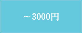 〜3000