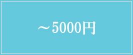 〜5000