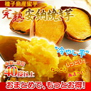 "The baked potato (sweet potato baked potato) of the Anno potato! As for the chilly sweets ancestor market medicine-maru which cool it, and potato ★ is corrupted into of the great great admiration the freezing ""taste of the baked potato highest grade"