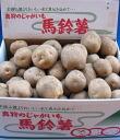 Makkari village planning Institute President tamio Fujimoto phantom man 爵い than 10 kg MS mix