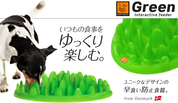 NORTHMATE グリーンフィーダー(GREEN interactive feeder)いつもの食事をゆっくり楽しむ。芝生型スローフィーダー!