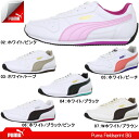 レデイース ladies sneaker sports shoes for 355503 puma Lady's shoes sneakers field sprint PUMA FIELDSPRINT BG women ●