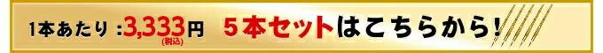 胴張型真竹竹刀『天龍』5本セット