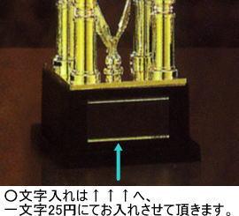 大会表彰用商品への彫刻(文字彫り)