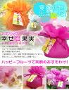 꽃 가방 행복의 열매 2 자루 세트 10P04oct13