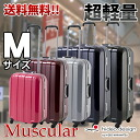 Suitcase carry case HIDEO WAKAMATSU frame type and lightest PC 100% mirror suitcase muscular medium-sized four-wheel M size large casters for 10P13oct13_b 10P10Nov13
