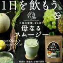 "The luxury smoothie which nourishment, the mineral which is necessary for all nourishment bodies which I squeeze it, and were born from vegetables and fruit and the enzyme with full of ""mother smoothies"" is filled, and goes."