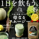 "The luxury green smoothie which nourishment, the mineral which is necessary for all nourishment bodies which I squeeze it, and were born from vegetables and fruit and the enzyme with full of ""mother smoothies"" is filled, and goes."