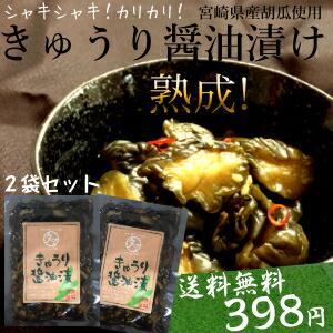 【送料無料】「宮崎産きゅうりの醤油漬け」2袋セット 生産量日本一の宮崎の新鮮な採れたてのきゅうりを醤油漬けした、 ご飯に合うおつまみにも美味しい逸品! 【漬物】【九州 野菜】【ご飯の友】