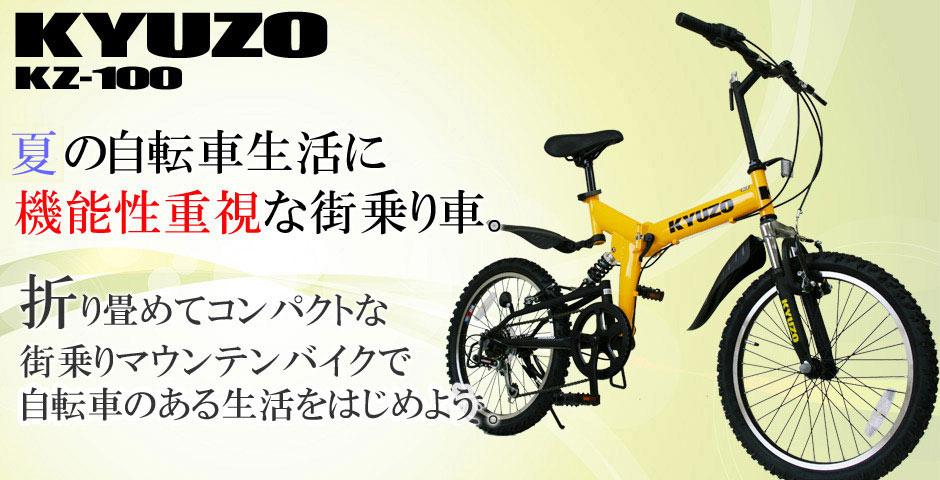 kz-100-13.jpg