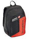 Tecnifibre( テクニファイバー )TEAM BACKPACK( backpack) one case black TFB033-BK●●