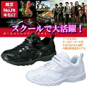 キッズスニーカーシュンソク eyewink foot youth sneakers sneaker ●[ fs3gm]