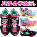 ● A superstar of the SUPERSTARJ166 topic boiling! New development youth shoes sneakers [HRD]