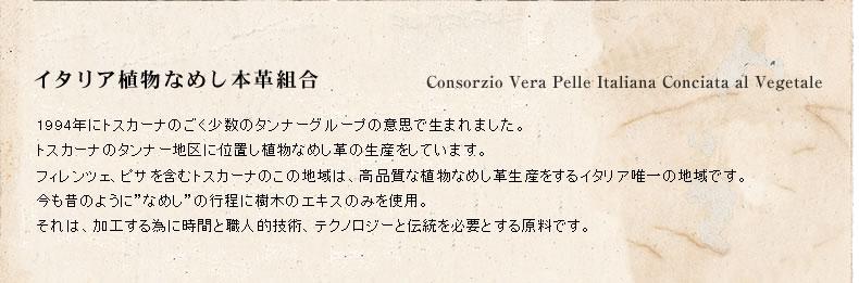 txt_01.jpg
