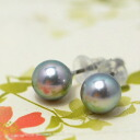 5mm/6mm blue gray pearl oyster pearl pierced earrings / earrings blue and a green color floating かぶてりってりの upper grade pearl oyster pearl with an affordable price