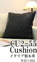 cu2-55