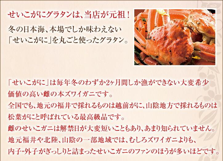 せいこ蟹のグラタンは当店が元祖!冬の日本海、本場でしか味わえない本ズワイガニの雌の「せいこがに」を丸ごと使ったグラタン。