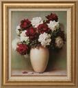 Red Rose White Rose love Lila