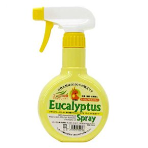 Eucalyptus putasu spray