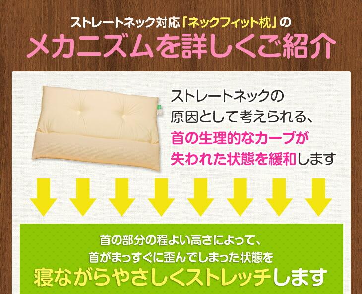 ストレートネック対応 ネックフィット枕のメカニズムを詳しくご紹介 首の生理的なカーブが失われた状態を緩和します 寝ながらやさしくストレッチします