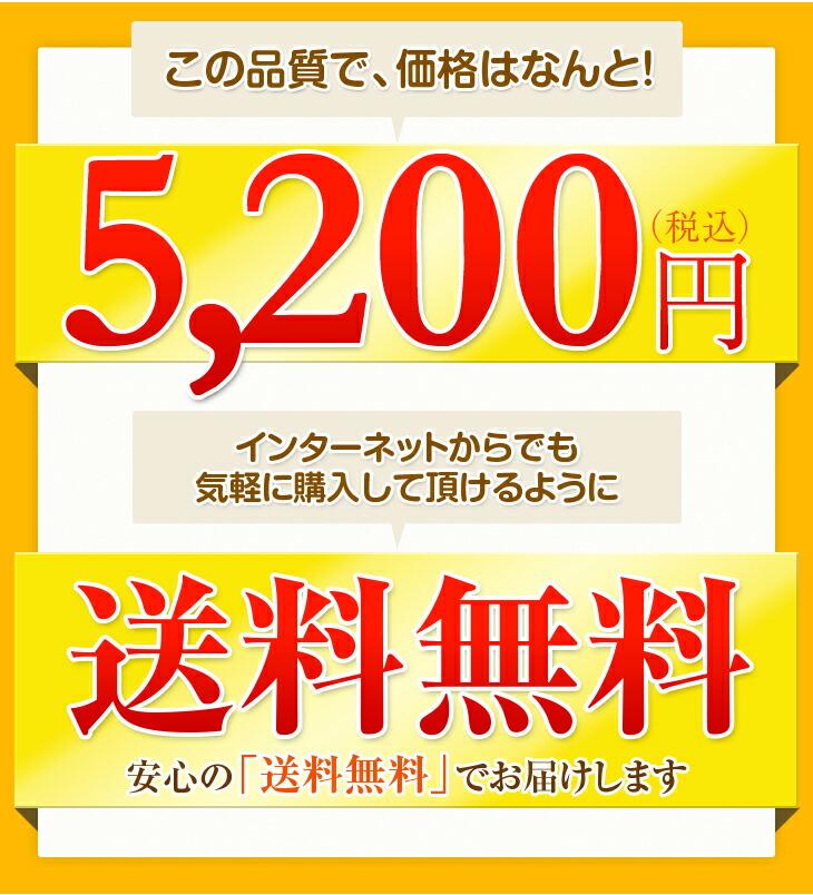 この品質で、価格はなんと! 5,200円 送料無料 安心の送料無料でお届けします
