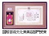 国際芸術文化賞