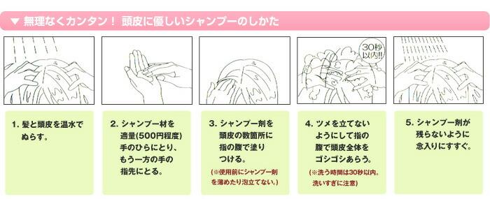 使用方法 1. 髪と頭皮を温水でぬらす。 2. シャンプー剤を適量(500円程度)手のひらにとり、もう一方の手の指先にとる。 3. シャンプー剤を頭皮の数カ所に指の腹で塗りつける。(※使用前にシャンプー剤を薄めたり泡立てない。) 4.ツメを立てないようにして指の腹で頭皮全体をゴシゴシあらう。(※洗う時間は30秒以内。洗い過ぎに注意) 5.シャンプー剤が残らないように念入りにすすぐ。