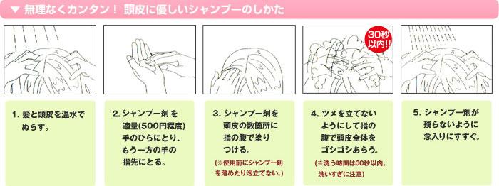 使用方法 1. 髪と頭皮を温水でぬらす。 2. シャンプー剤を適量(500円程度)てのひらにとりもう一方の手の指先に取る。 3. シャンプー剤を頭皮の数箇所に指の腹でぬりつける。(使用前にシャンプー剤を薄めたり泡立てない。 4.ツメを立てないようにして指の腹で頭皮全体をゴシゴシあらう(洗う時間は30秒以内。洗いすぎに注意) 5.シャンプー剤が残らないように念入りにすすぐ。