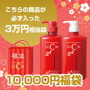 Lucia bags by 2015 (equivalent to 30000 yen) set! Gives shine and firmness to grab-bag hair medicated future keep shampoo and conditioner (economy bottle) must be entered