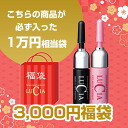 Lucia bags by 2015 (equivalent to 10000 yen) set! Bags details hair eyelashes or eyebrows, pinpoint growth hair of one must be entered