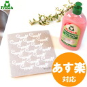 The ♪ ass フロッシュ (Frosch) & sponge wipe gift set (detergent (aloe Bella skillful with a meal, a pomegranate 500 ml of) & sponge wipe) kitchen eco-detergent moving greetings kitchen detergent gift 10P_021510P01Feb14 sale which NEW フロッシュ can choose