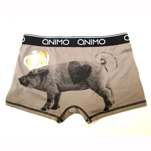 ANIMO/Pig boy(ブラウン) アニモ