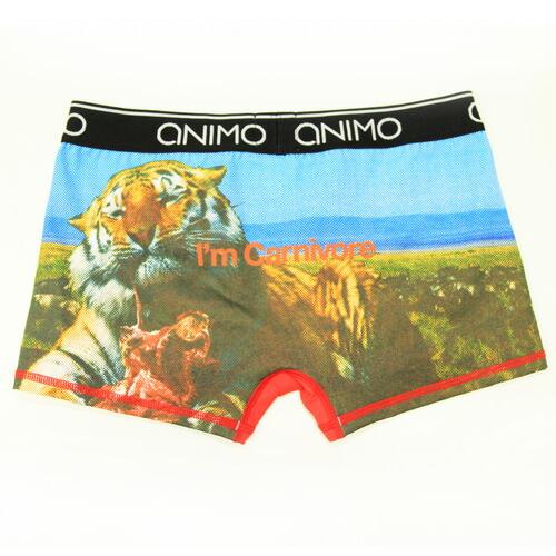 ANIMO/Carnivore(ブラック×ブルー) アニモ