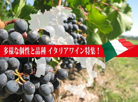 多種な個性と品種!イタリアワイン特集!