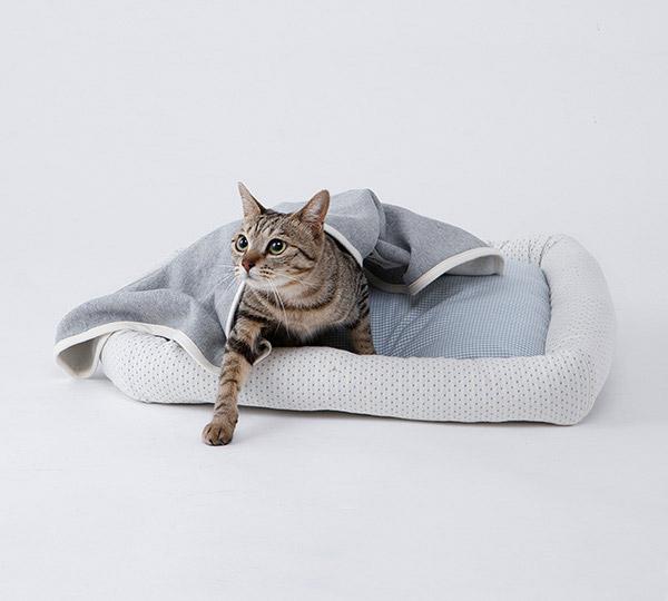 オーガニックコットンの猫の毛布