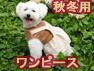 秋冬用ワンピース(オーガニックコットン犬服)