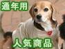 通年用人気商品(オーガニックコットン犬服)