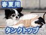 春夏用タンクトップ(オーガニックコットン犬服)