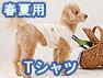 春夏用Tシャツ(オーガニックコットン犬服)