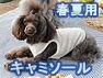 春夏用キャミソール(オーガニックコットン犬服)