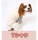 Tシャツ(オーガニックコットン犬服)