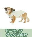 アンダーウェア・ケアウェア/ミニチュアダックス(オーガニックコットン犬服)
