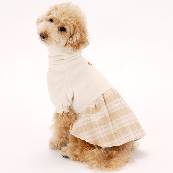 Clothes of the organic cotton dog